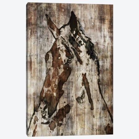 Thumper Canvas Print #ORL58} by Irena Orlov Art Print