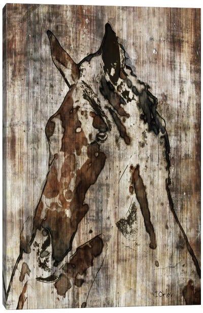 Thumper Canvas Art Print