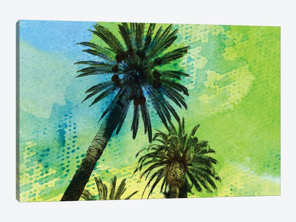 Two Palm Trees by Irena Orlov 1-piece Canvas Print