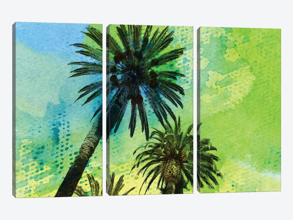 Two Palm Trees by Irena Orlov 3-piece Canvas Art Print