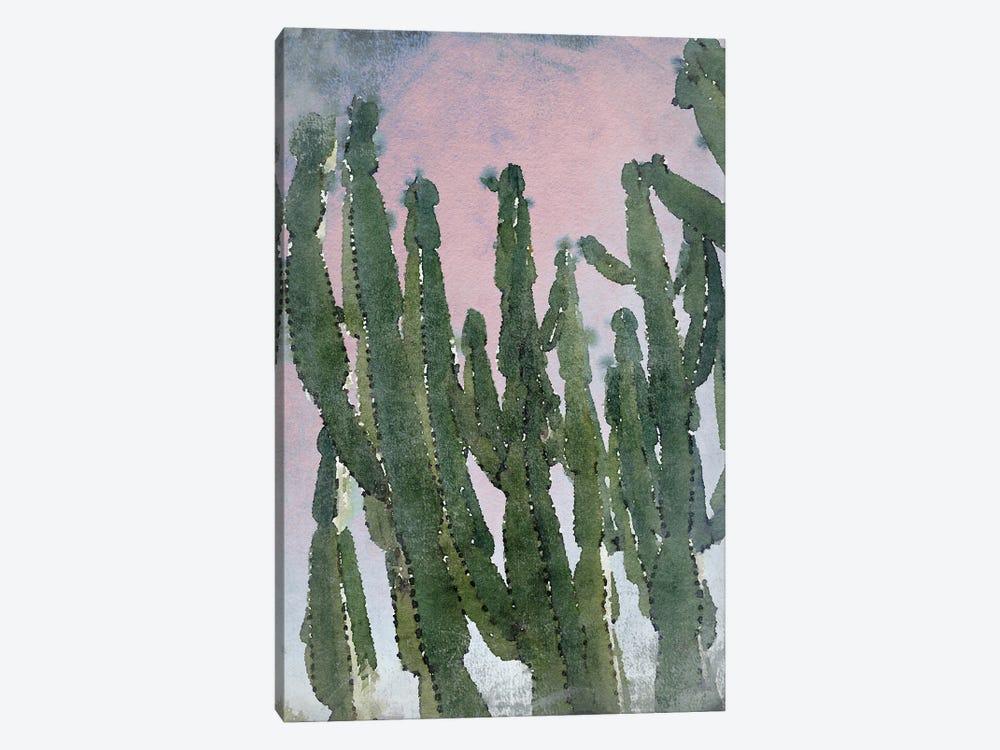 Desert Cactus I by Irena Orlov 1-piece Canvas Wall Art
