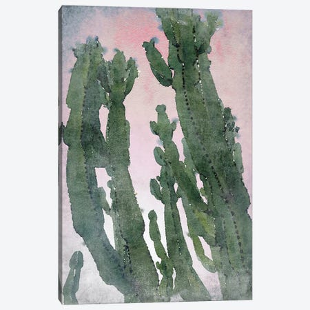 Desert Cactus II Canvas Print #ORL648} by Irena Orlov Canvas Artwork