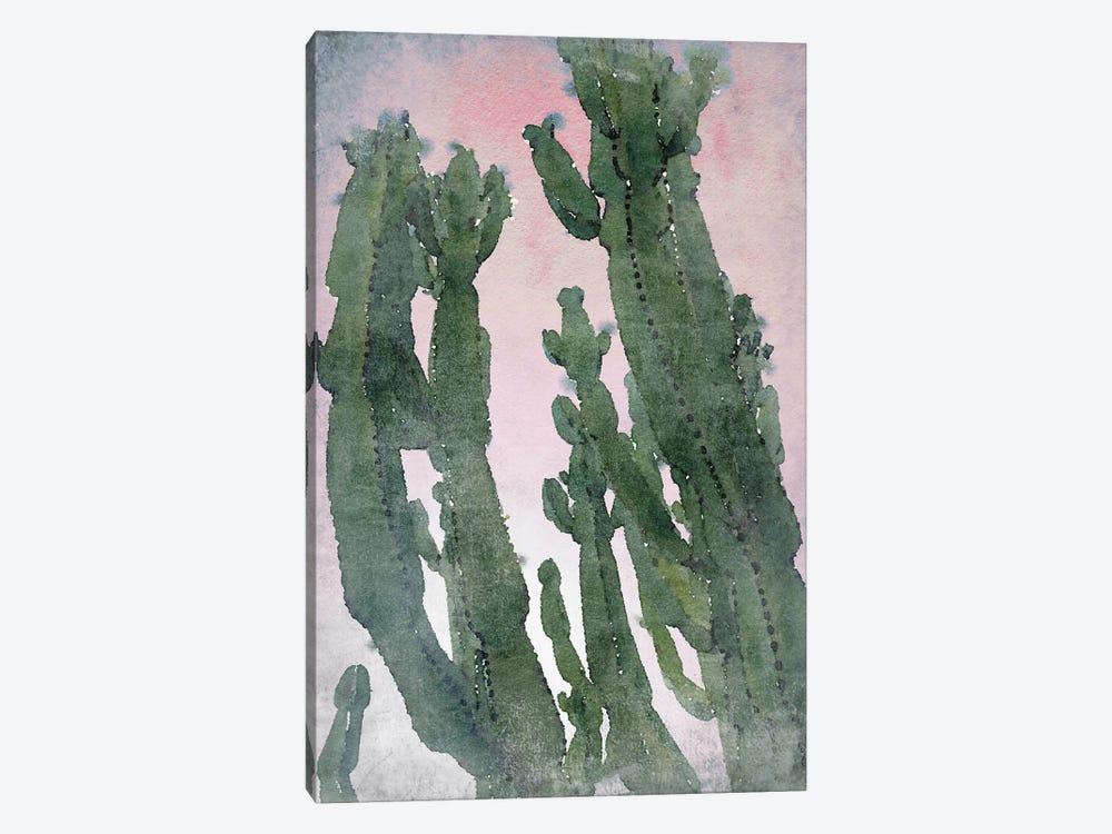 Desert Cactus II by Irena Orlov 1-piece Canvas Print