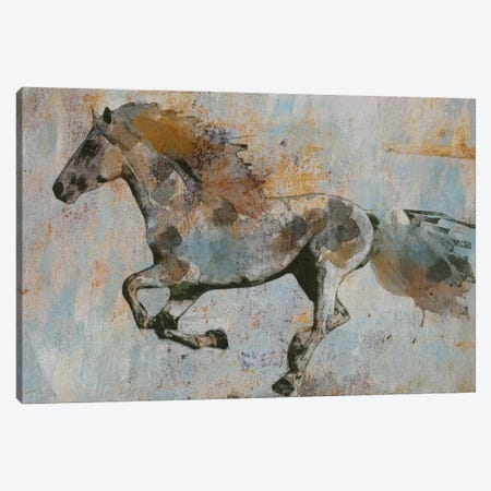 Rusty Horse I Canvas Print #ORL650} by Irena Orlov Art Print