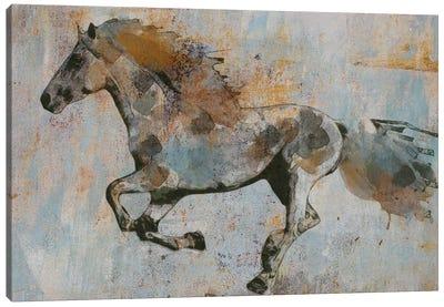 Rusty Horse I Canvas Art Print