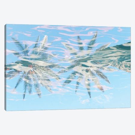 In Harmony With Nature - Palms Reflection VIII Canvas Print #ORL652} by Irena Orlov Canvas Print
