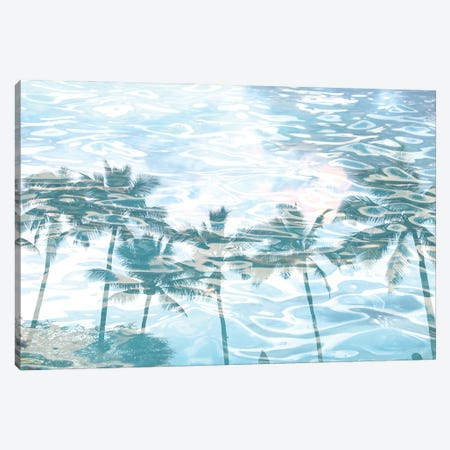 In Harmony With Nature - Palms Reflection X Canvas Print #ORL653} by Irena Orlov Canvas Art Print