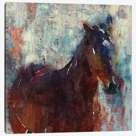 Wild Brown Horse Canvas Print #ORL66} by Irena Orlov Canvas Print