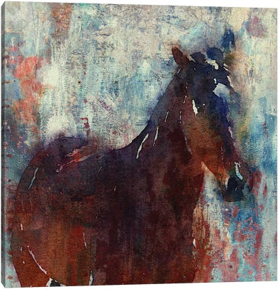 Wild Brown Horse Canvas Art Print