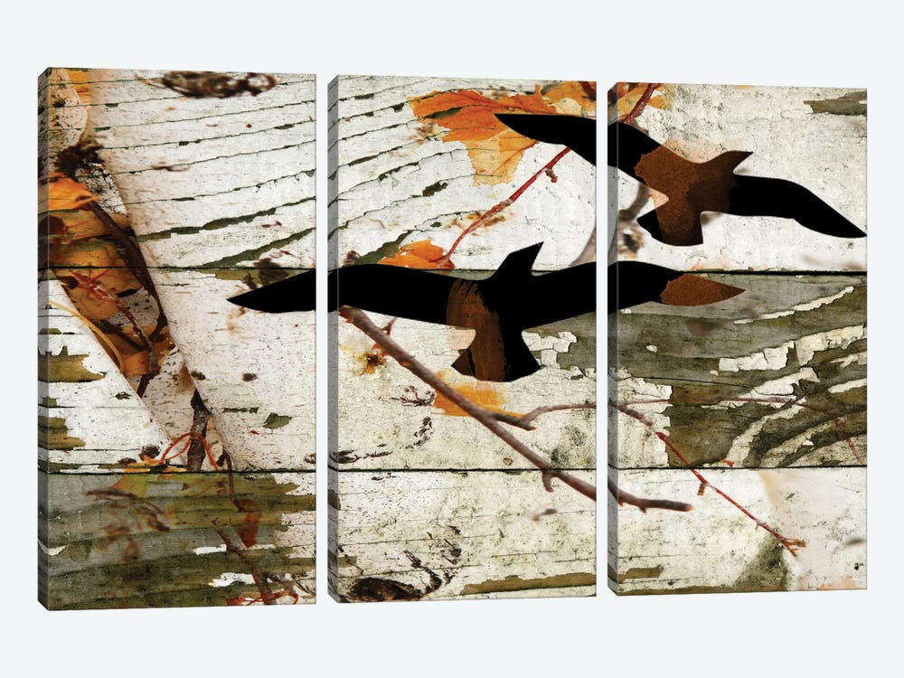 Birds On A Birch I by Irena Orlov 3-piece Art Print
