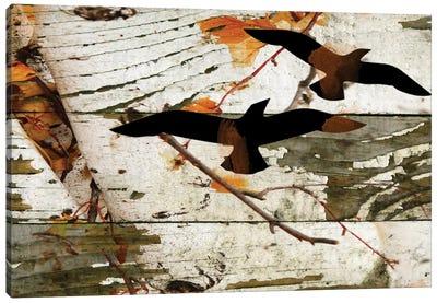 Birds On A Birch I Canvas Art Print