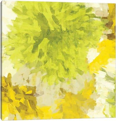 Lightness Iif Canvas Art Print