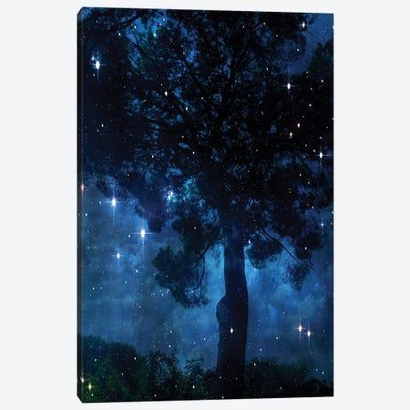 Midnight Sky 2 Canvas Print #ORL703} by Irena Orlov Canvas Art Print