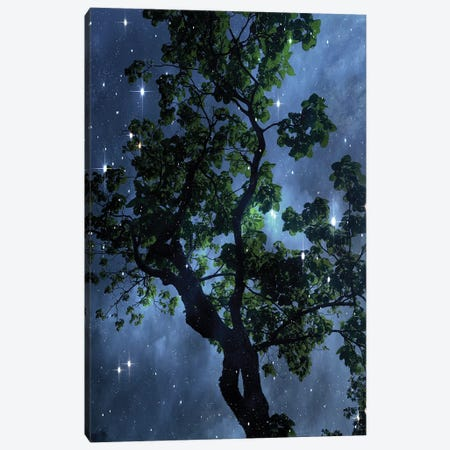 Midnight Sky 3 Canvas Print #ORL704} by Irena Orlov Canvas Art