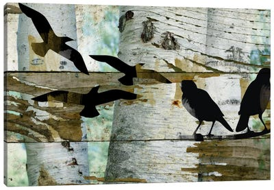 Birds On A Birch II Canvas Art Print