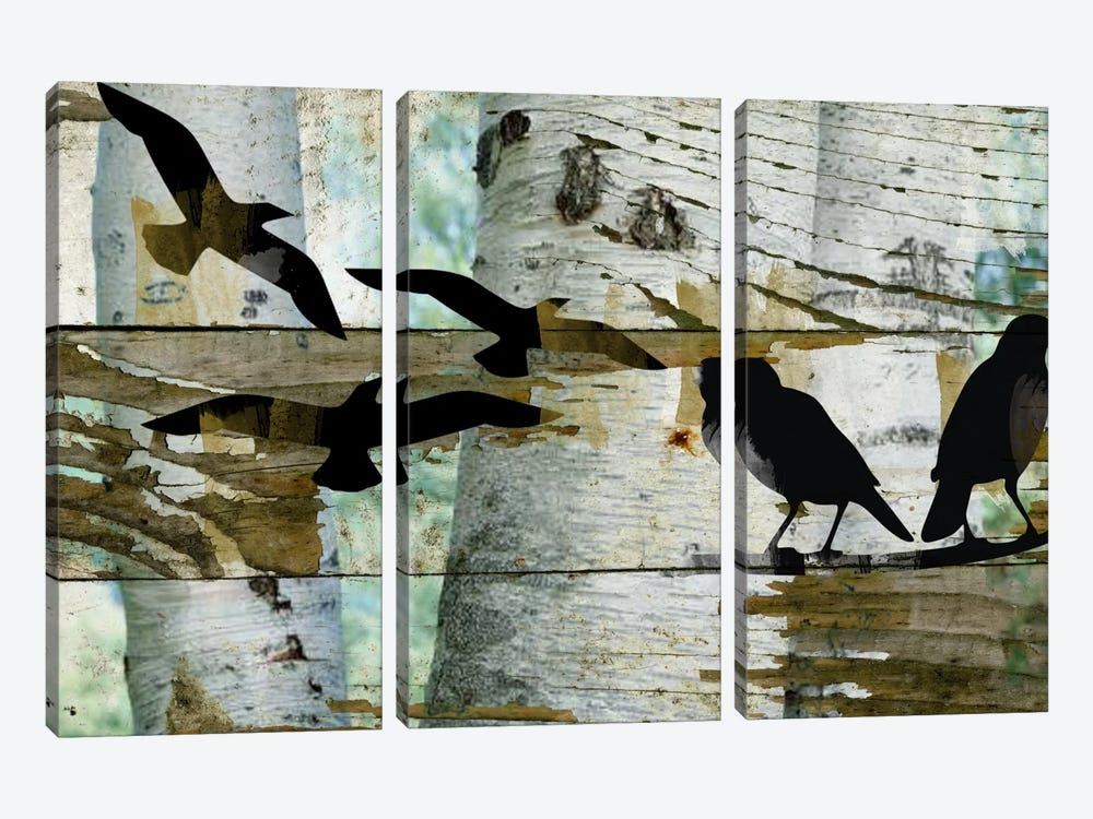 Birds On A Birch II by Irena Orlov 3-piece Canvas Art Print