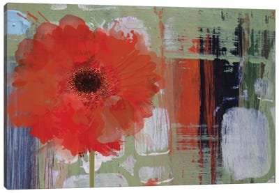 Blooming Canvas Print #ORL72