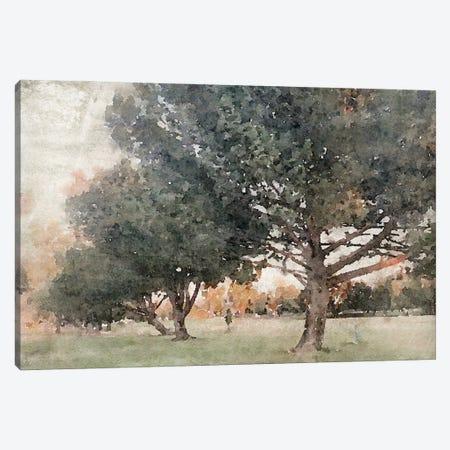 November Evening 3 Canvas Print #ORL734} by Irena Orlov Canvas Art Print
