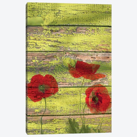 Red Dots On Green Ii 2 Canvas Print #ORL741} by Irena Orlov Art Print