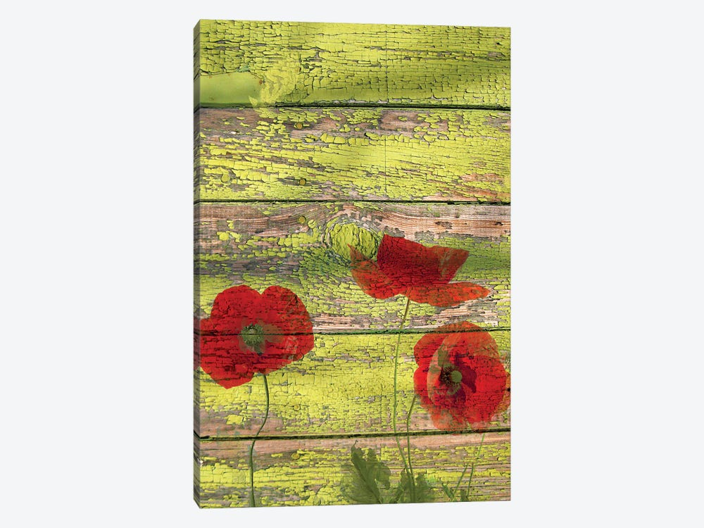Red Dots On Green Ii 2 by Irena Orlov 1-piece Canvas Art Print