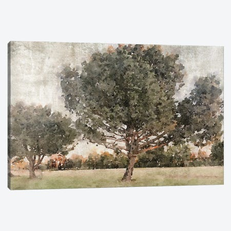 Rural Landscape In The Foggy November 2 Canvas Print #ORL743} by Irena Orlov Canvas Print