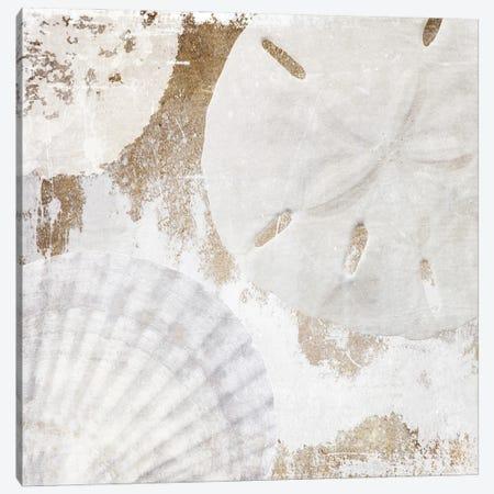 White Shells I Canvas Print #ORL755} by Irena Orlov Art Print