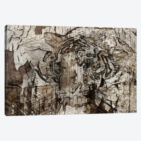 Brown Tiger Canvas Print #ORL75} by Irena Orlov Canvas Art