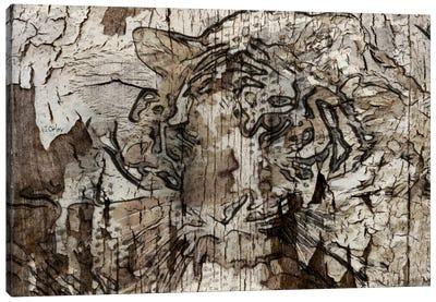 Brown Tiger Canvas Art Print