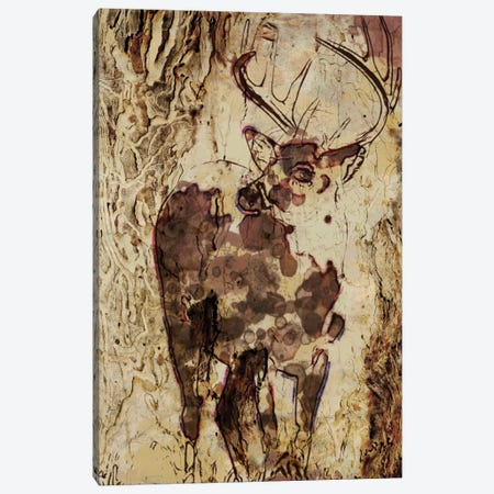 Deer In The Forest Canvas Print #ORL78} by Irena Orlov Canvas Art Print