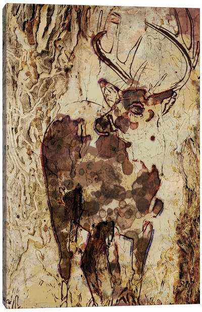Deer In The Forest Canvas Art Print