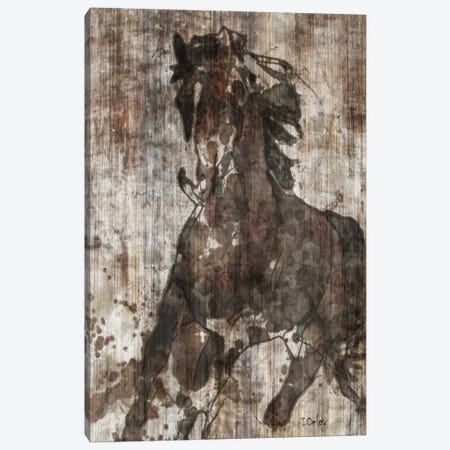 Galloping Horse Canvas Print #ORL83} by Irena Orlov Canvas Wall Art