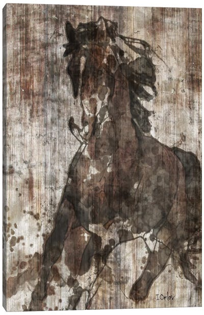 Galloping Horse Canvas Art Print