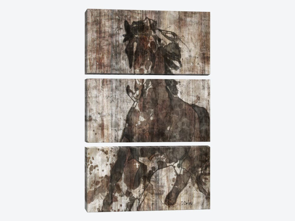 Galloping Horse by Irena Orlov 3-piece Art Print