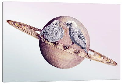In Which Bird Watching May Require The Aid Of A Telescope Canvas Art Print