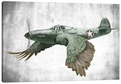 Its A Bird Its A Plane Canvas Art Print