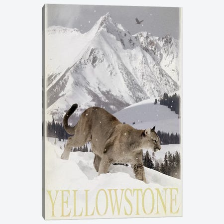 Mountain Lion Canvas Print #ORT137} by Old Red Truck Art Print