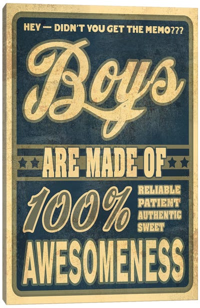Boys Are 100% Awesomeness Canvas Art Print