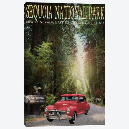 Sequioa National Park Canvas Print #ORT151} by Old Red Truck Canvas Art