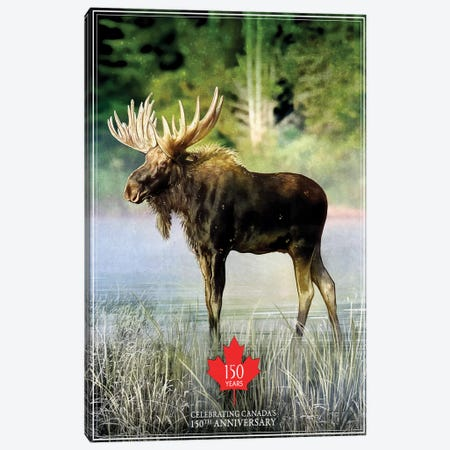 Canada's 150th Anniversary, Moose Canvas Print #ORT17} by Old Red Truck Canvas Art