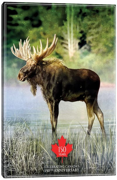 Canada's 150th Anniversary, Moose Canvas Art Print