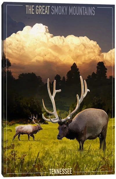 Smokey Mountains I Canvas Art Print