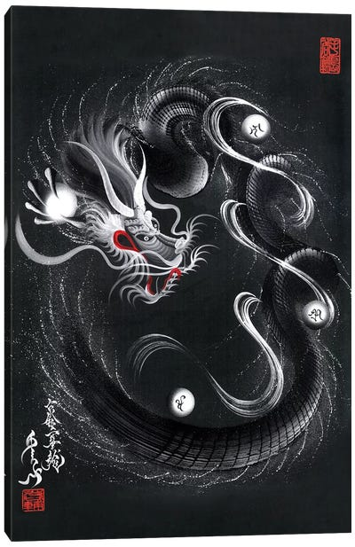 Guardian Silver Black Dragon Canvas Art Print