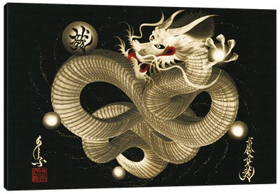 Impending Sky Dragon Canvas Art Print