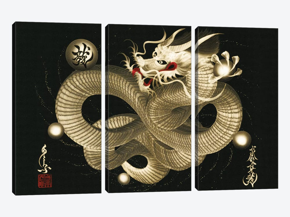 Impending Sky Dragon by One-Stroke Dragon 3-piece Canvas Art
