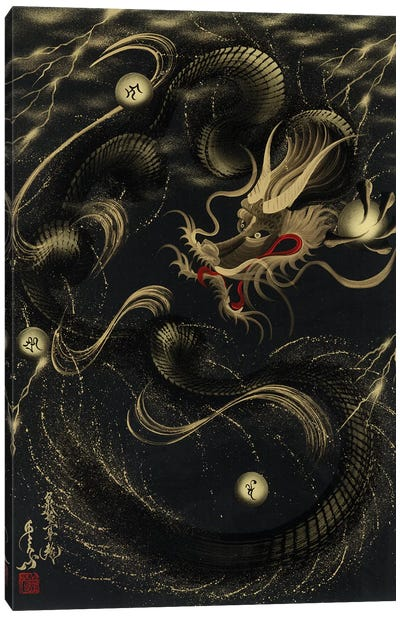 Thunder Black Dragon Canvas Art Print