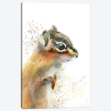 Dottie Canvas Print #OSF108} by Olga Shefranov Art Print