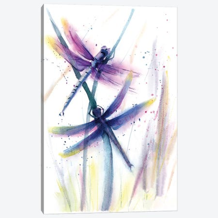 Dragonflies II Canvas Print #OSF110} by Olga Shefranov Canvas Wall Art