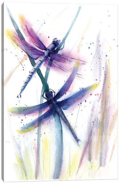 Dragonflies II Canvas Art Print