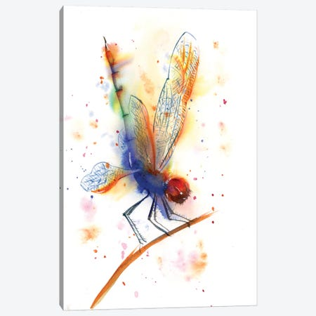 Dragonfly II Canvas Print #OSF111} by Olga Shefranov Canvas Art