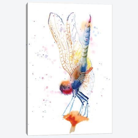 Dragonfly II Canvas Print #OSF112} by Olga Shefranov Canvas Art